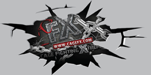 cracked logo for site.fw